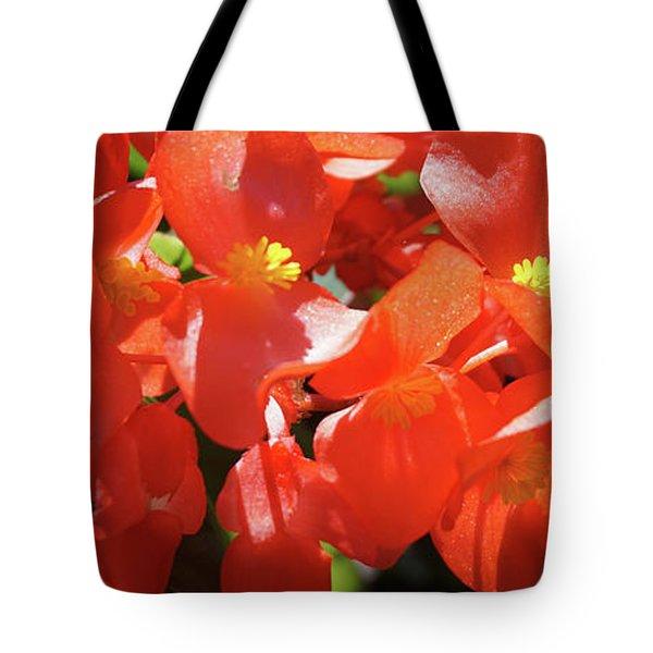 Beautiful Begonias Tote Bag by Lynne Guimond Sabean