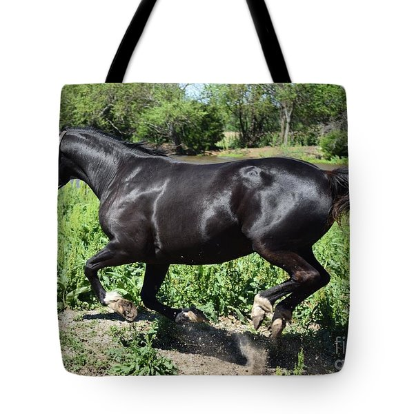 Beautiful Black Horse Tote Bag