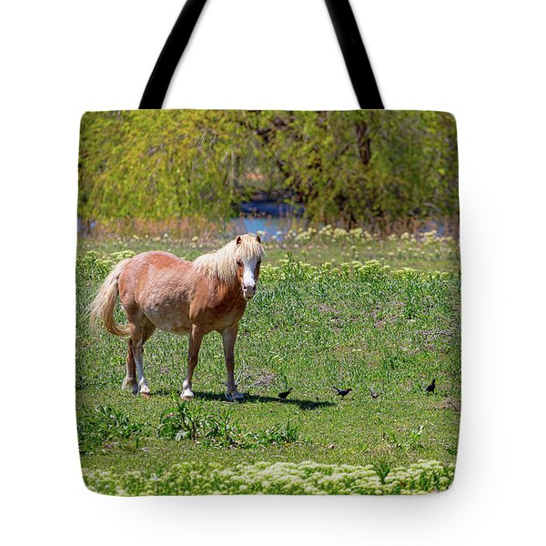 Beautiful Blond Horse And Four Little Birdies Tote Bag by James BO Insogna