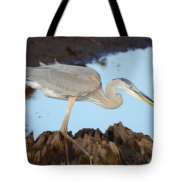 Tote Bag featuring the photograph Beautiful Blue  by Kathy Gibbons