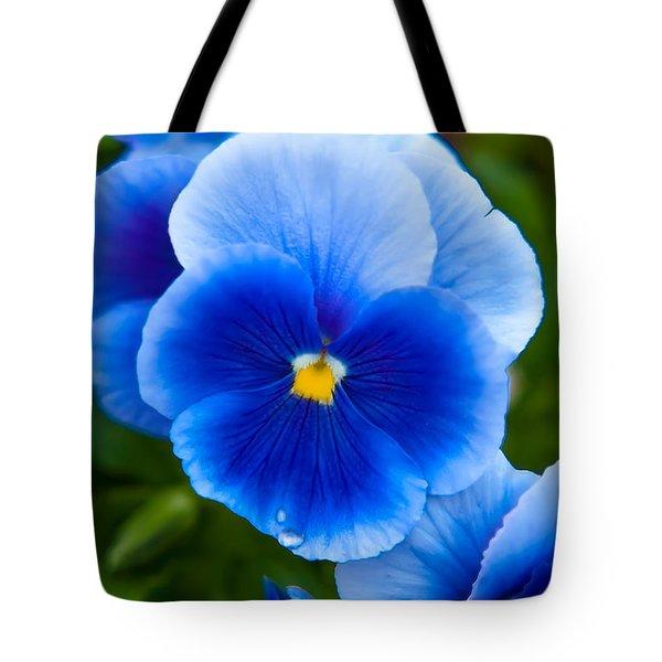 Beautiful Blues Tote Bag
