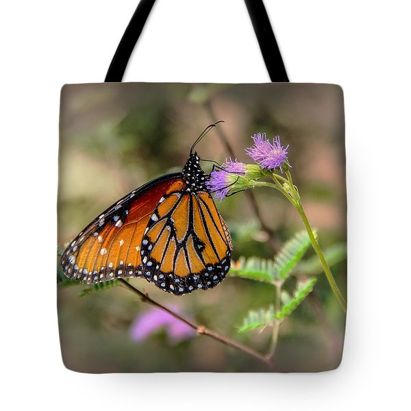 Tote Bag featuring the photograph Beautiful Butterfly by Elaine Malott