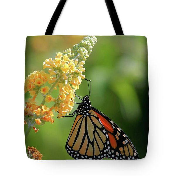 Beautiful Butterfly Tote Bag by Karol Livote