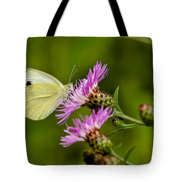 Beautiful Butterfly On Pink Thistle Tote Bag