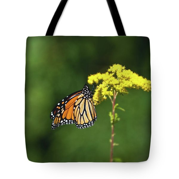 Beautiful Combination Tote Bag