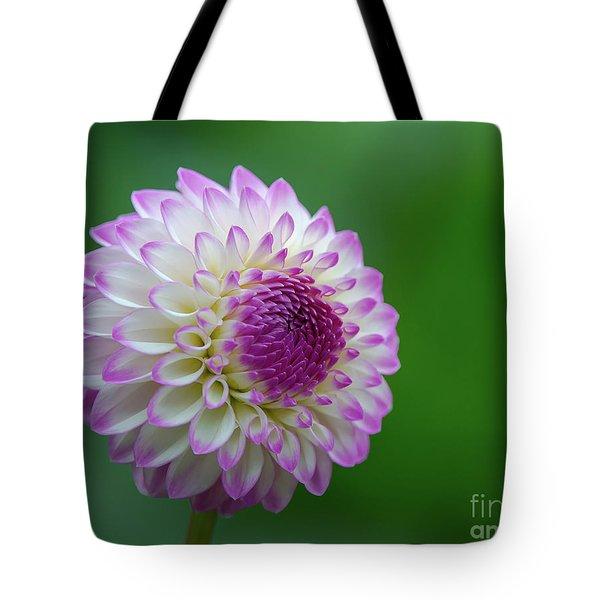 Beautiful Dahlia 1 Tote Bag