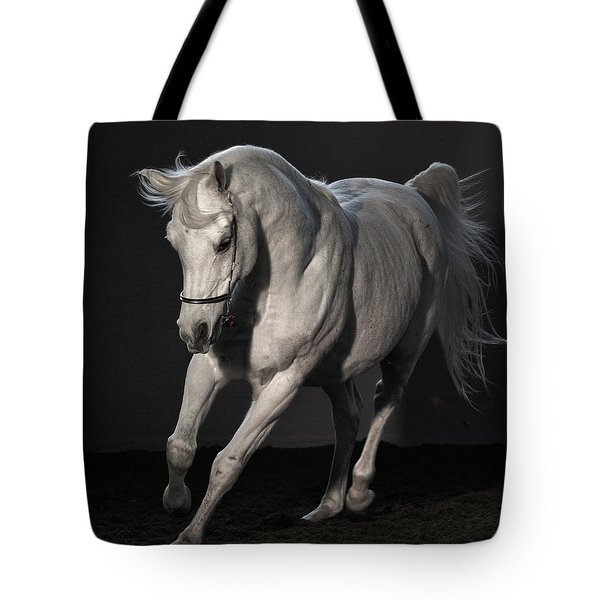 Beautiful Dancer Tote Bag