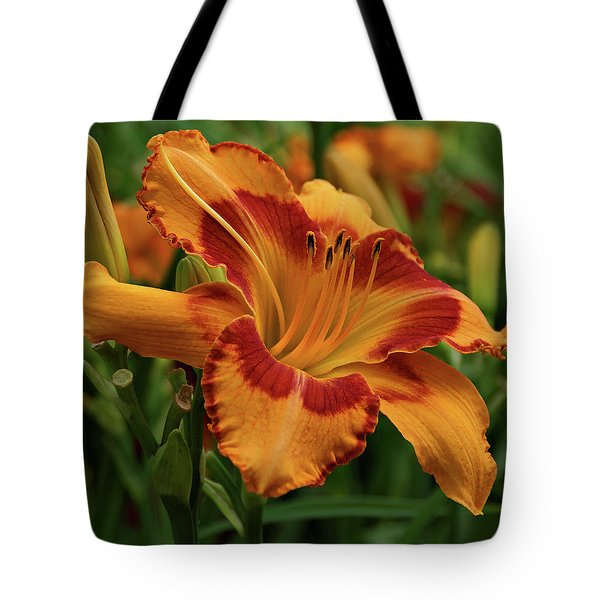 Tote Bag featuring the photograph Beautiful Daylily by Sandy Keeton