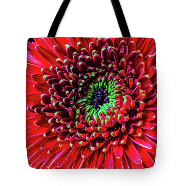 Beautiful Details Of Gerbera Daisy Tote Bag by Garry Gay