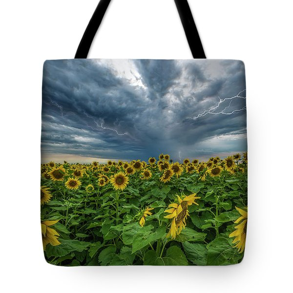 Beautiful Disaster  Tote Bag