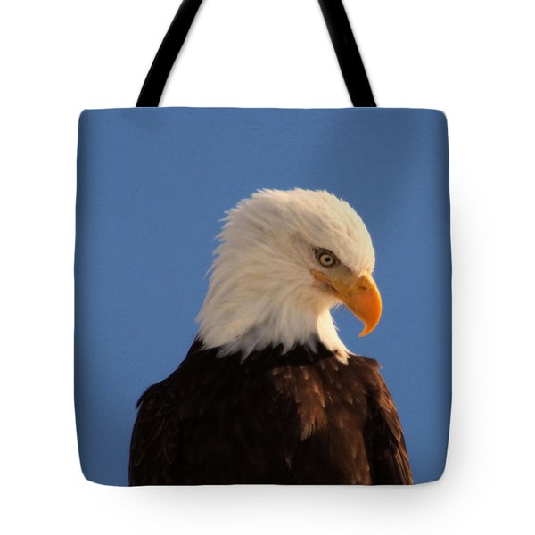 Tote Bag featuring the photograph Beautiful Eagle by Jeff Swan