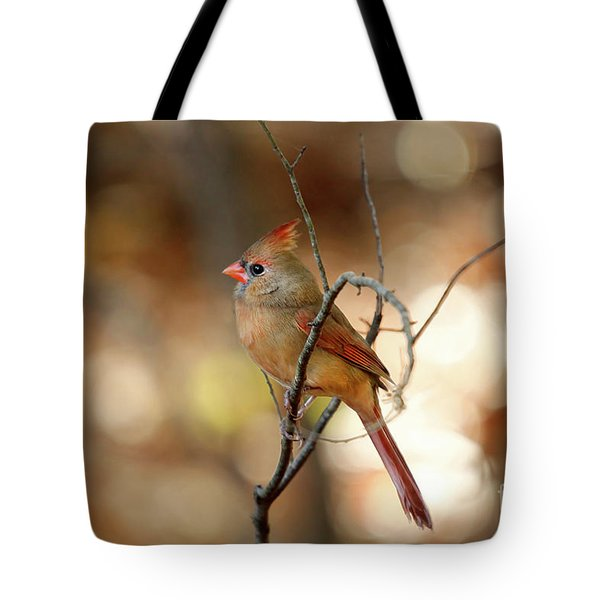 Beautiful Female Cardinal Tote Bag