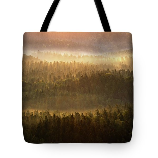 Beautiful Foggy Forest During Autumn Sunrise, Saxon Switzerland, Germany Tote Bag