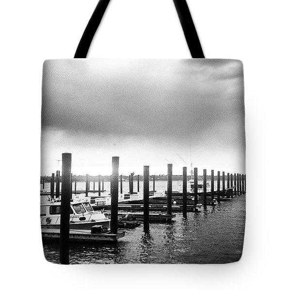 Beautiful Gray Day Tote Bag by Lauren Fitzpatrick