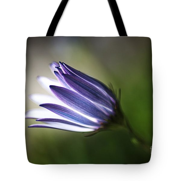 Beautiful Inner Glow Of The Daisy Tote Bag