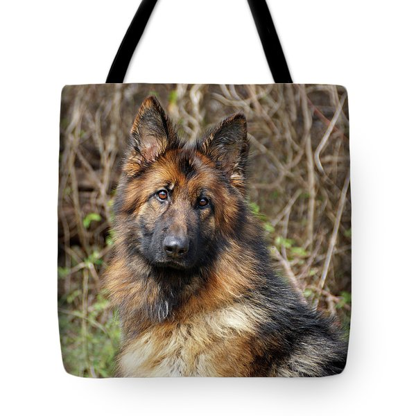 Tote Bag featuring the photograph Beautiful Jessy by Sandy Keeton