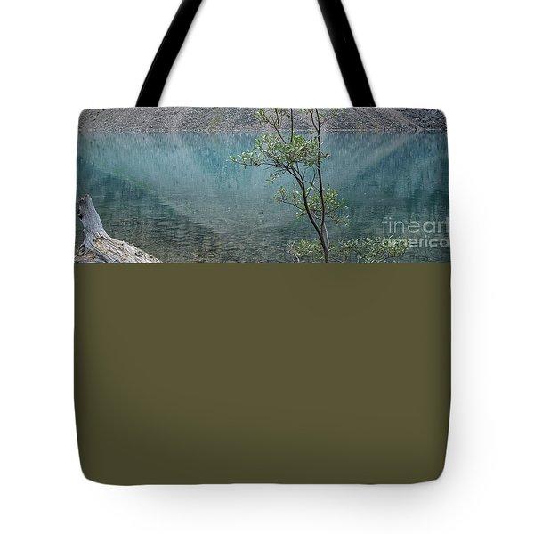 Beautiful Lake Moraine Tote Bag by Patricia Hofmeester