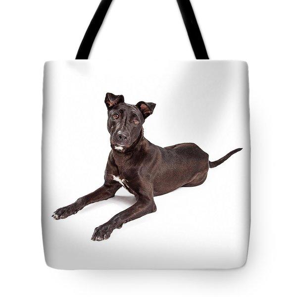 Beautiful Large Labrador Retriever Crossbreed Dog Tote Bag