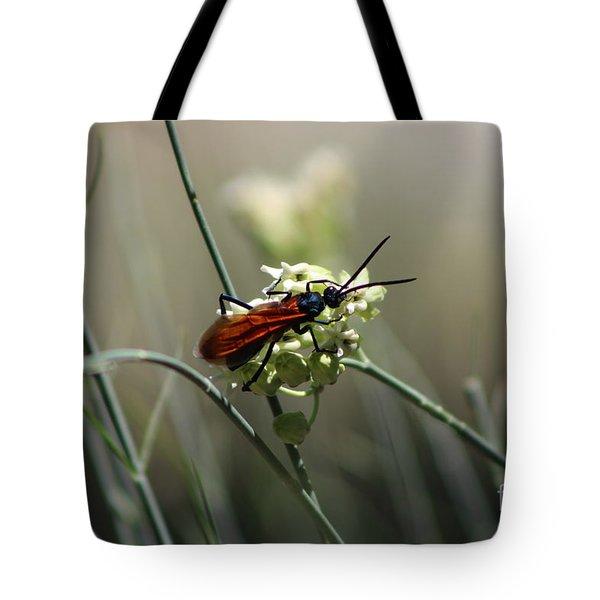Beautiful Little Nightmare Tote Bag