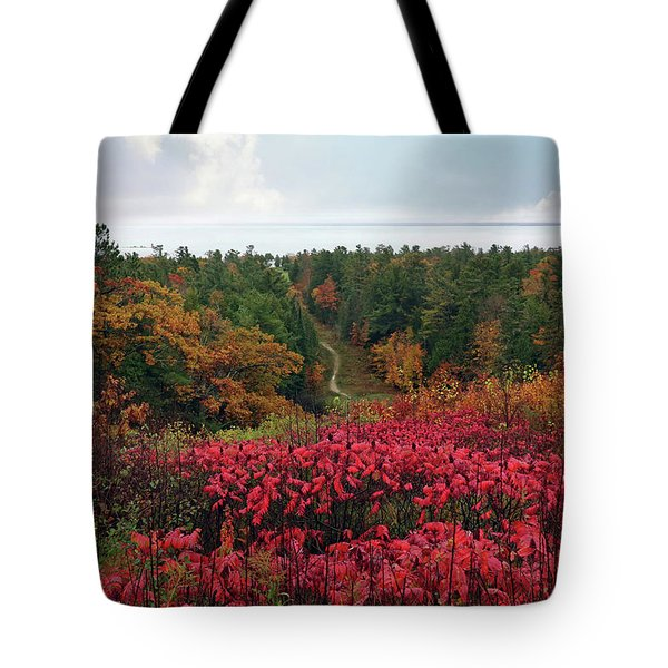 Tote Bag featuring the photograph Beautiful Mackinac Island by Jackson Pearson
