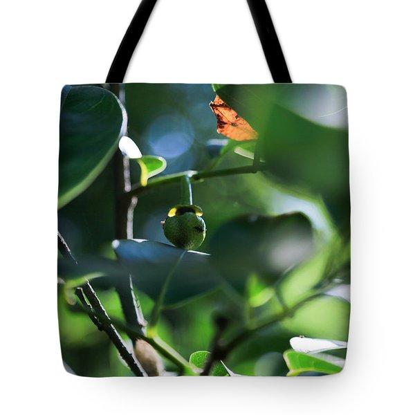 Beautiful Nature Tote Bag