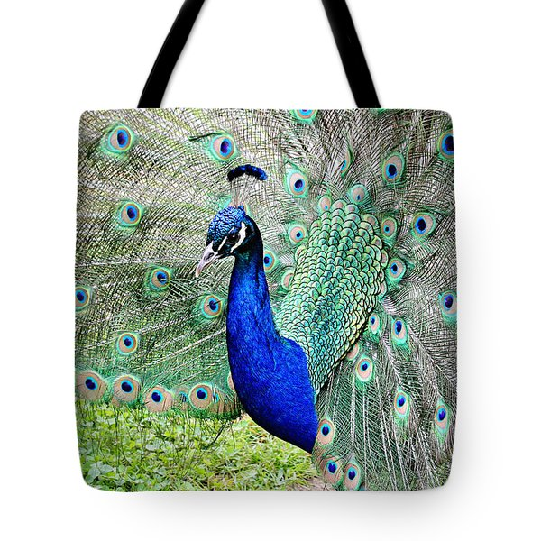 Tote Bag featuring the photograph Beautiful Peacock by Trina  Ansel