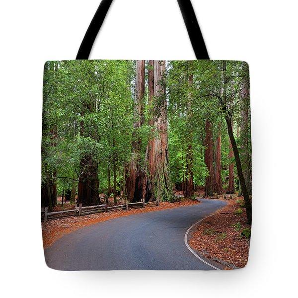 Beautiful Redwood Grove Tote Bag