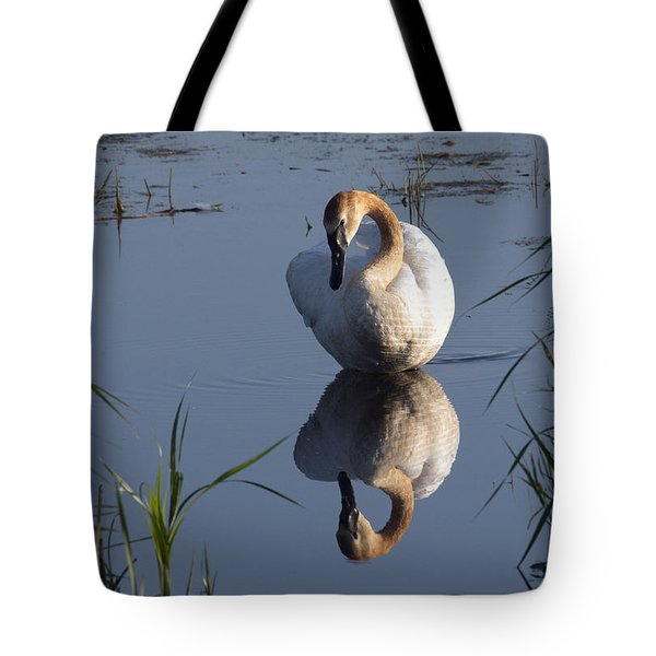 Beautiful Reflection Tote Bag