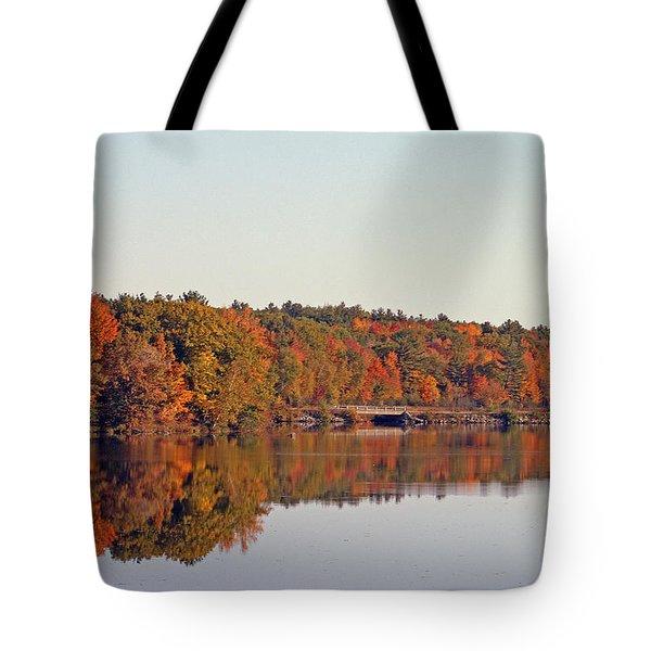 Beautiful Reflections Tote Bag by Kay Novy