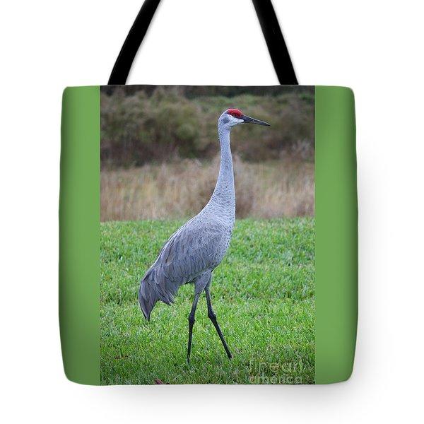 Beautiful Sandhill Crane Tote Bag