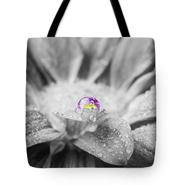 Beautiful Splash Of Purple On A Daisy In The Garden Tote Bag