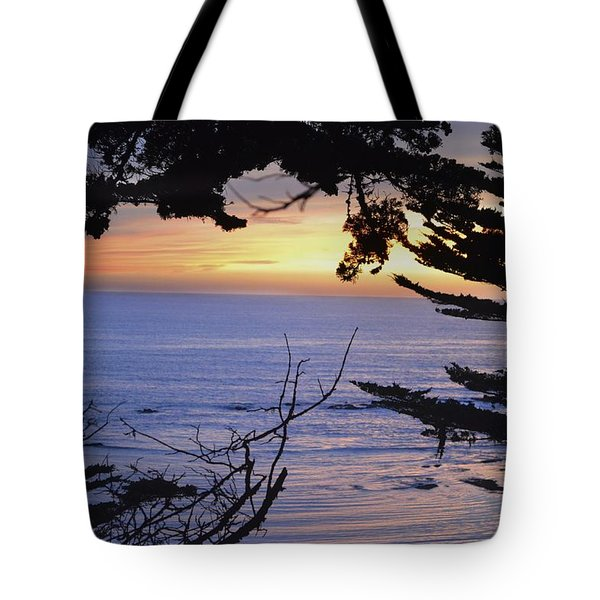 Tote Bag featuring the photograph Beautiful Sunset by Alex King