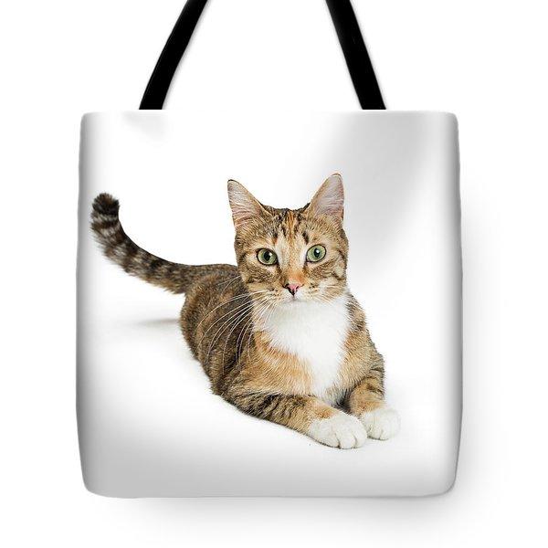 Beautiful Tabby Cat Looking At Camera Tote Bag
