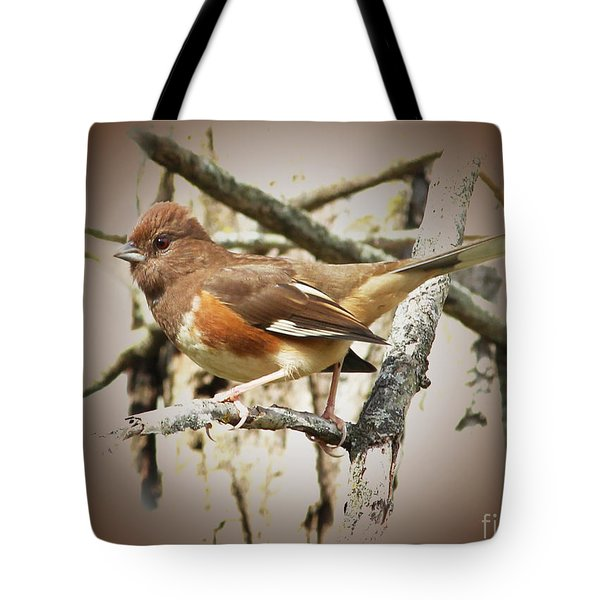 Beautiful Towhee Tote Bag by Anita Oakley