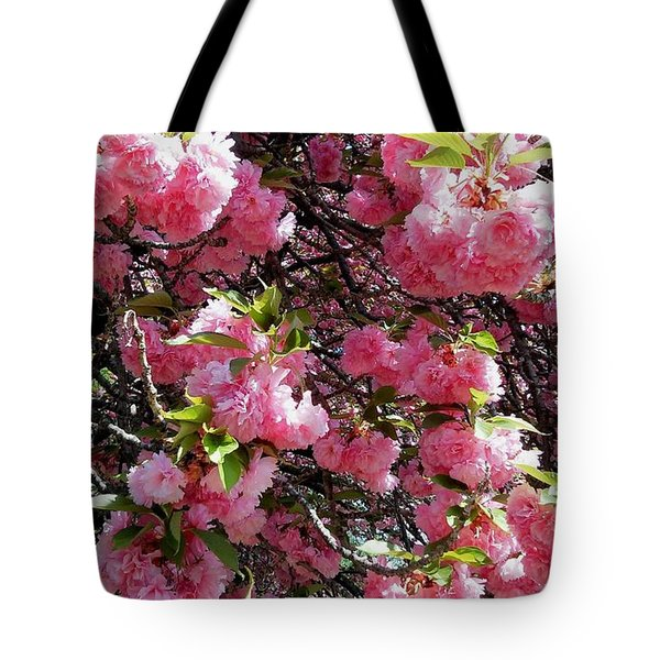 Beautiful Tree Tote Bag by Vickie G Buccini