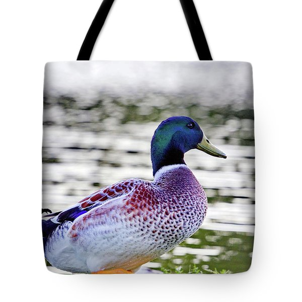 Beautiful Vibrant Mallard Duck Tote Bag