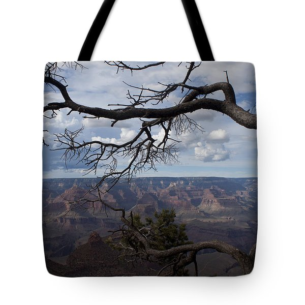 Beautiful View Of Grand Canyon Tote Bag
