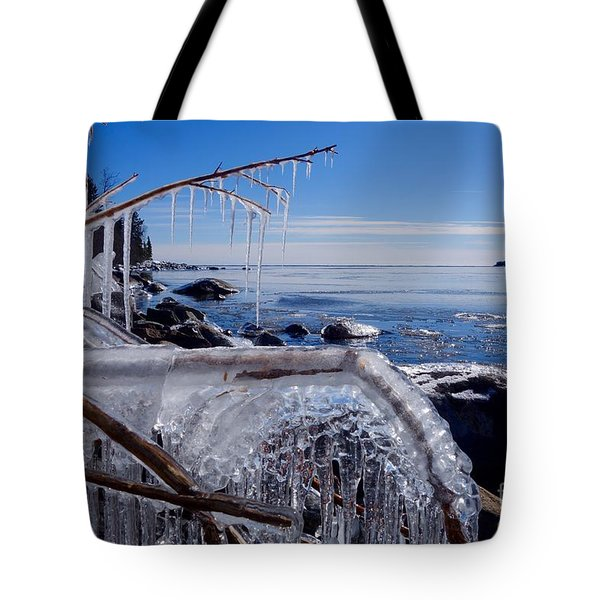 Beautiful Winter Day Tote Bag by Sandra Updyke