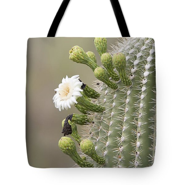 Beauty Among The Thorns Tote Bag by Anne Rodkin