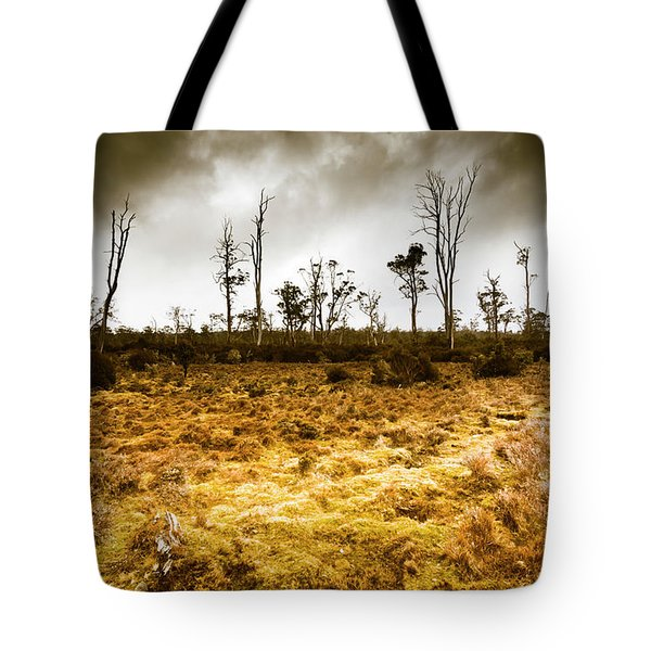 Beauty And Barren Bushland Tote Bag