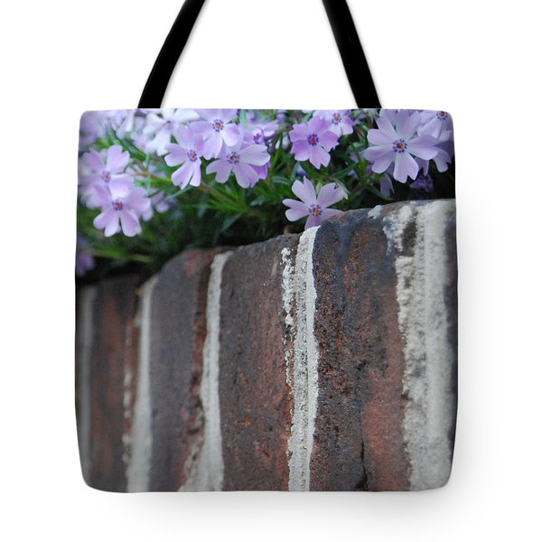 Beauty And Bricks Tote Bag