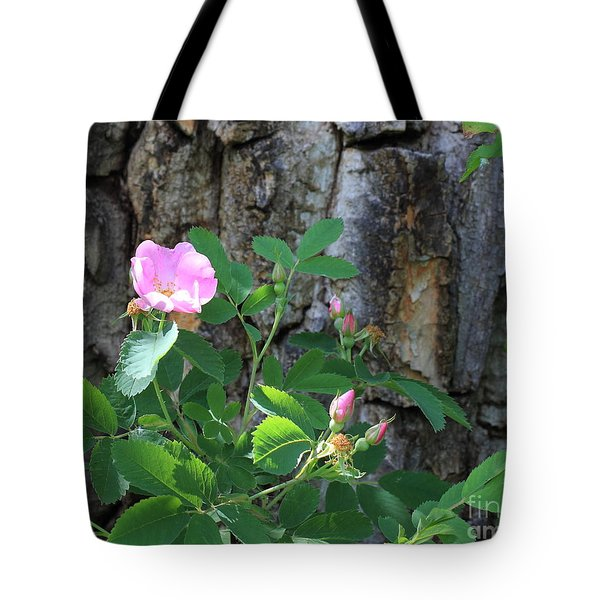 Beauty And The Beast Tote Bag by Jim Sauchyn