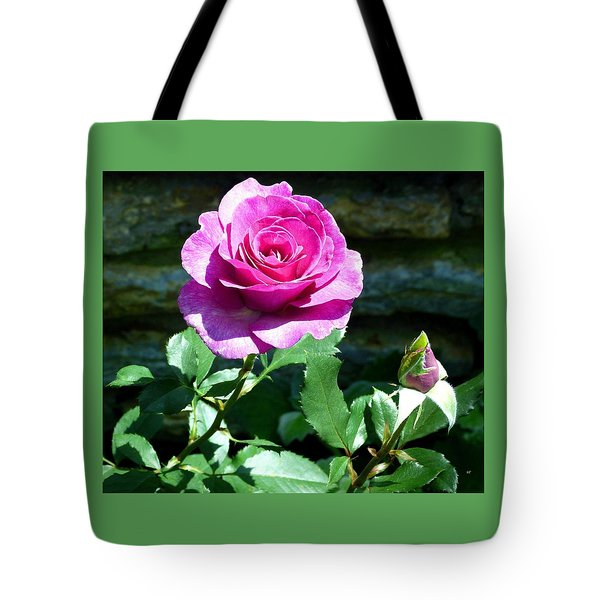 Tote Bag featuring the photograph Beauty And The Bud by Will Borden