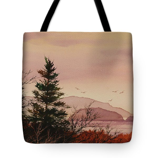 Tote Bag featuring the painting Beauty At The Shore by James Williamson