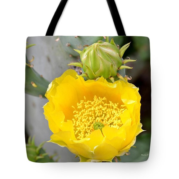 Beauty Begets Beauty Tote Bag