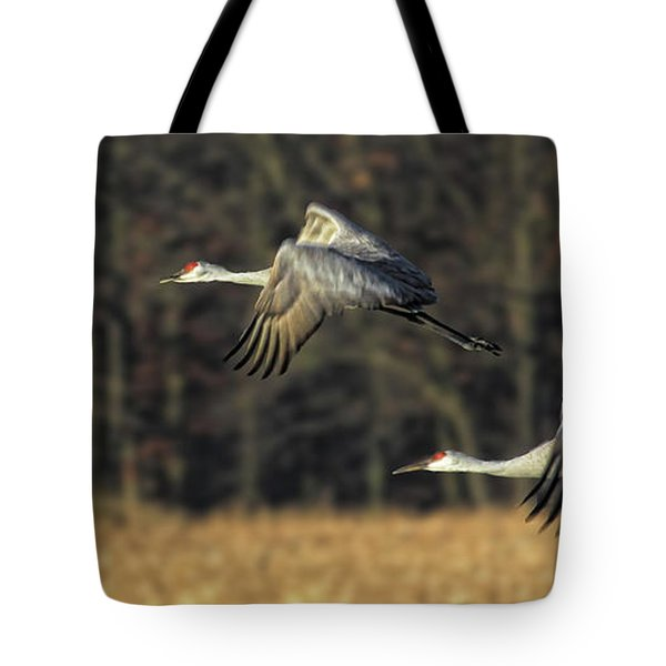 Beauty In Motion Tote Bag