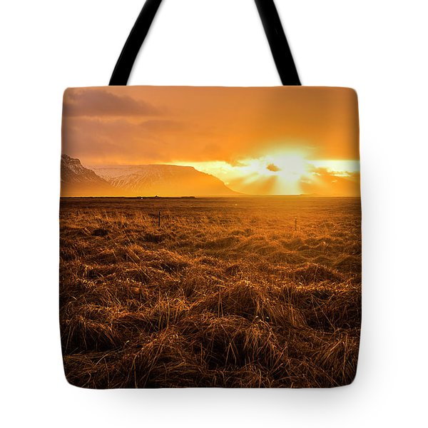 Tote Bag featuring the photograph Beauty In Nature by Pradeep Raja Prints