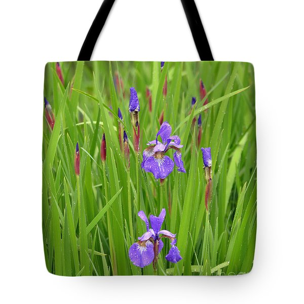 Beauty In The Rain Tote Bag