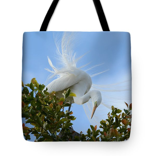 Tote Bag featuring the photograph Beauty In The Treetop by Fraida Gutovich