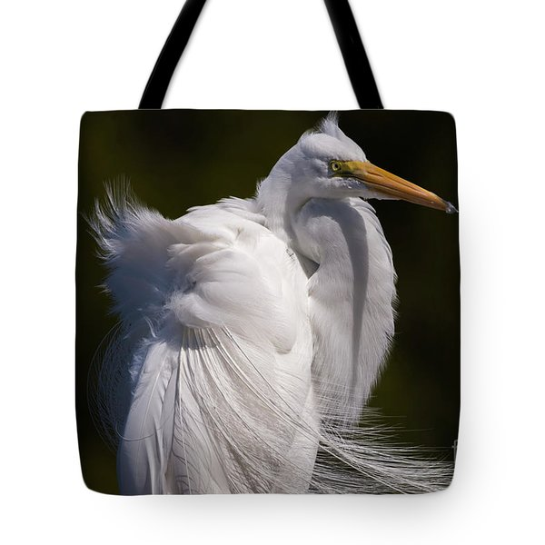 Beauty In The Wind Tote Bag